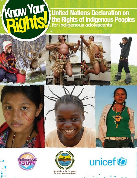 UnitedNationsDeclaration-forindigenousadolescents